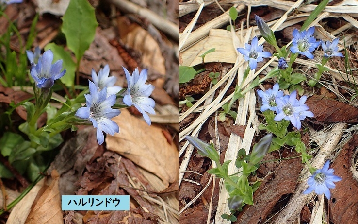 Photo_20190622210901